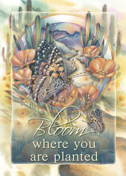 Bloom Where You Are Planted - Magnet