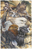 Sky Kings Small Prints (Click for options & image enlargement)