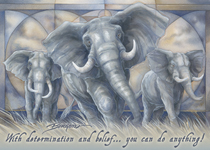 Elephants / Spirit Of The Earth - Magnet