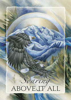 Eagles (Bald) / Soaring Above it All - Magnet