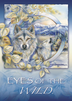 Eyes of the Wild - Magnet