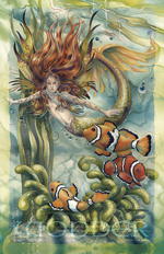 Mermaids & Sea Faeries / Let Dreams Live - 11 x 14 inch Poster