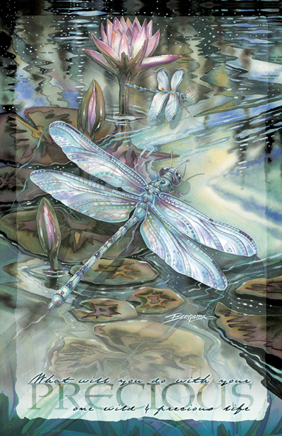 Dragonflies / Wild & Precious Life - 11 x 14 inch Poster