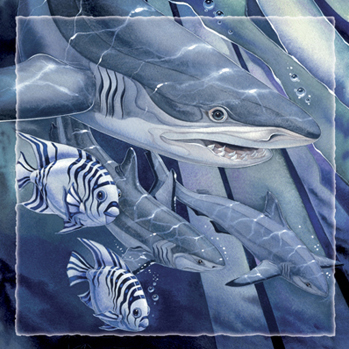 Sharks / Seas The Day! - Tile