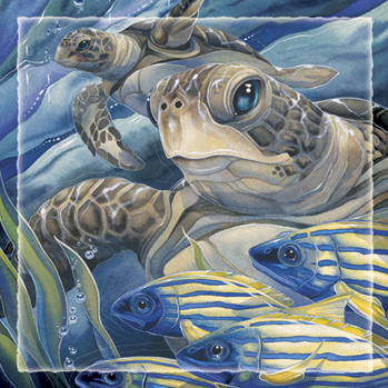 Turtles / The Sea Has Eyes - Tile