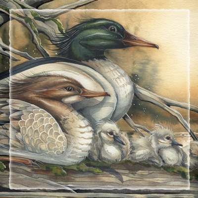Ducks / A New Day Dawning - Tile