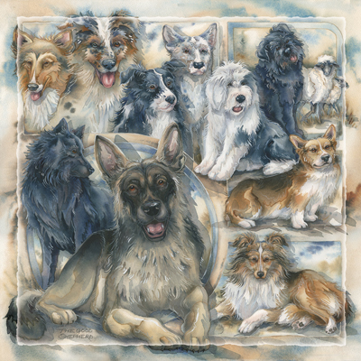 Dogs / The Good Sheperd - Tile