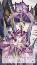 Irises / Lady Of The Lake - Mailable Mini