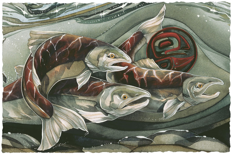 Fish (Salmon) / The Journey Home - Art Card