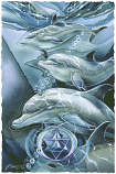 Dolphin Star Large Print (Click for options & image enlargement)