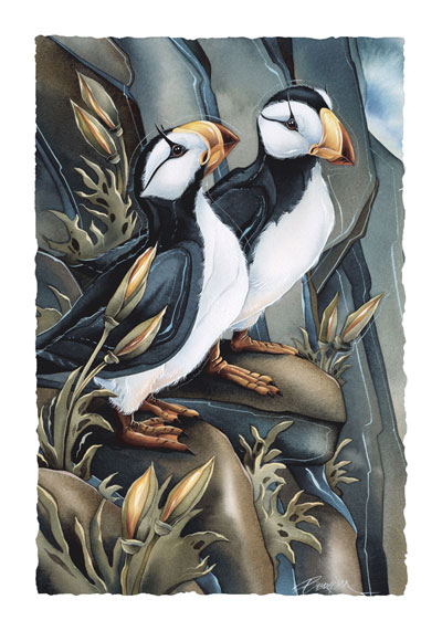 Puffins / Two Beaks, Or Not Two Beaks - Art Card