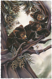 Bearly Hanging On Small Prints (Click for options & image enlargement)