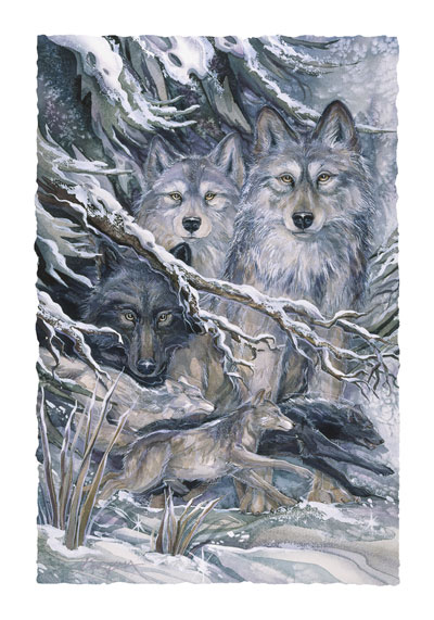 Wolves / The Power Of The Pack - Art Card