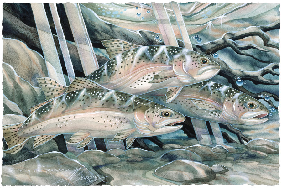 Fish (Trout) / Catch The Rainbow - Art Card