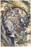 Wild Birds Circle Of Friends Large Prints (Click for options & image enlargement)