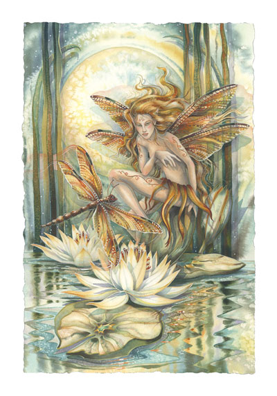 Faeries / Wild Magic - Art Card