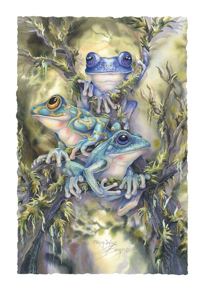 Frogs / Frog Wild - Art Card