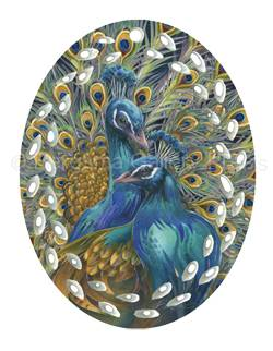Peacocks / Blue Rhapsody - Eye Catcher