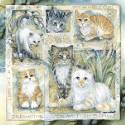 Cats / Be Pawsitive... - Tile
