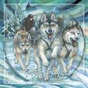 Dogs / Northern Heritage - Tile