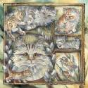 Cats / Tabistry - Tile