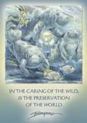 Manatees / In The Caring Of The Wild... - Magnet