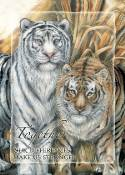 Wild Cats & Zoo Animals