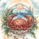 Miscellaneous Sea Life