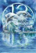 Hawks Soar