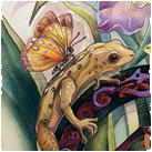 Misc. Amphibians