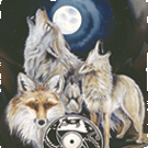 Wolves and Wild Dogs