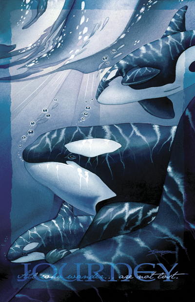 Whales (Orca) / The Pod Squad - 11 x 14 inch Poster