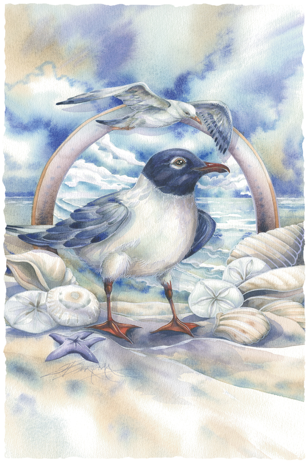 Gulls Just Wanna Have Fun- Prints