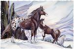 Medicine Horse Small Prints (Click for options & image enlargement)