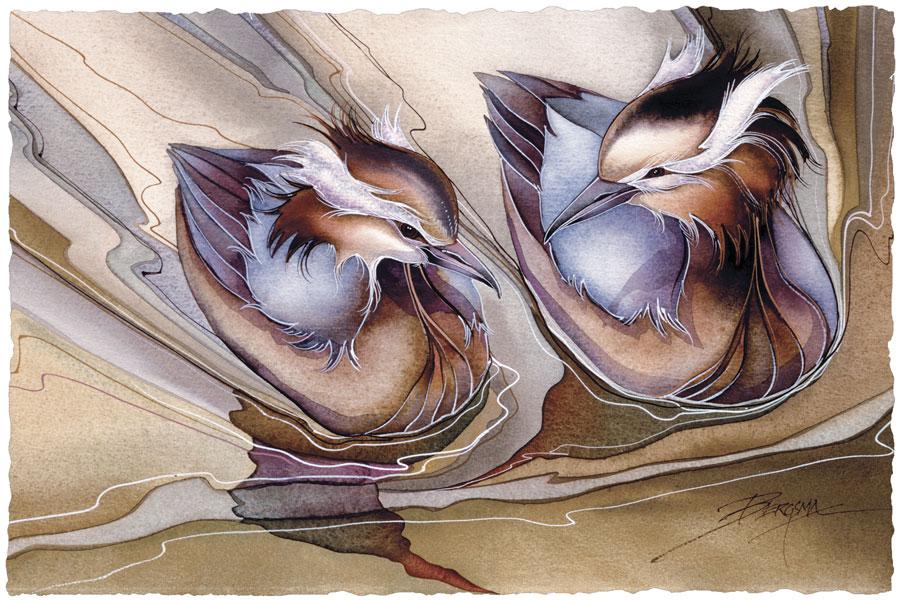 Grebes - Prints