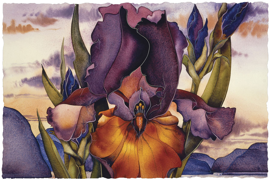 Irises / Fire Over The Islands - Art Card
