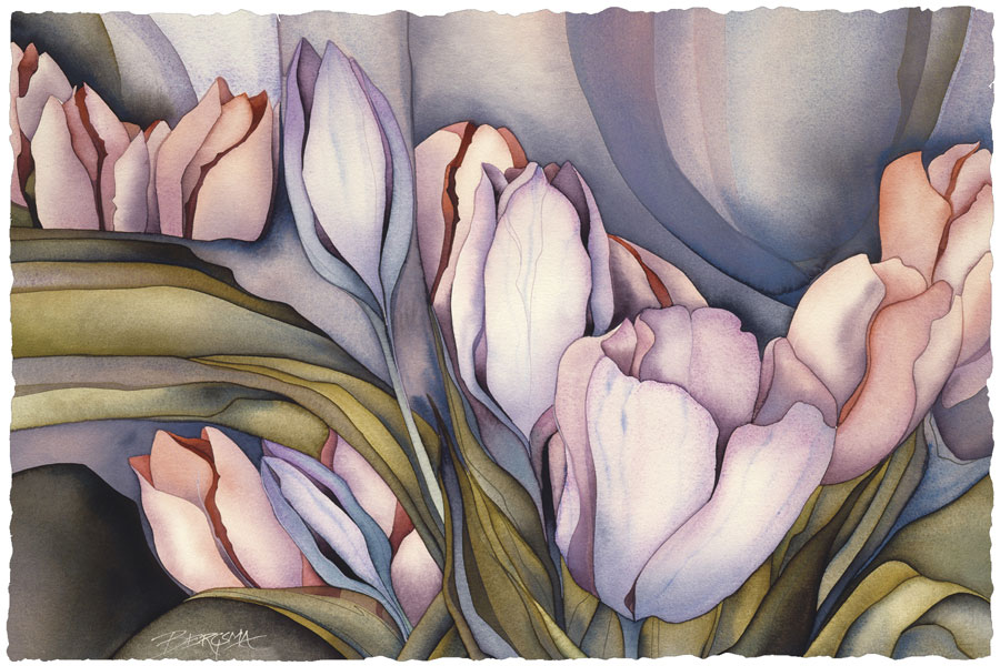 River Of Tulips - Prints