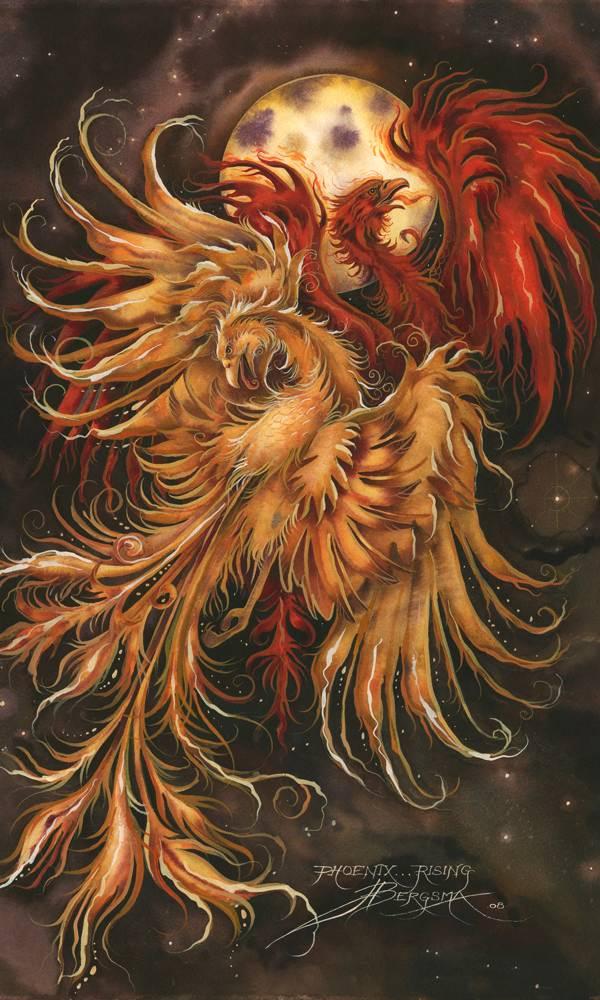 Phoenix Rising . . . - Prints