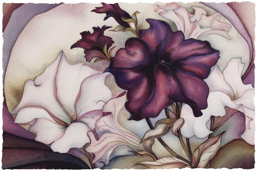 Petunia Garden - Prints
