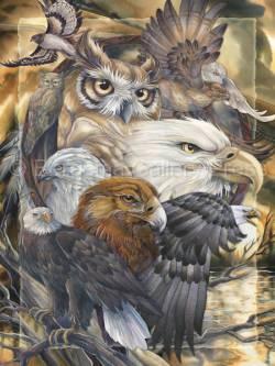 Sky Kings - Art Card