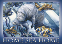 Home Sea Home - Magnet