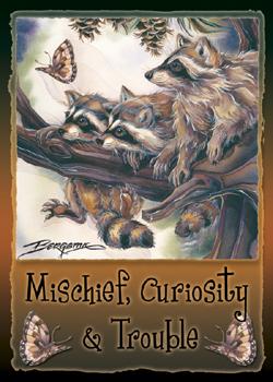 Raccoons / Mischief, Curiosity & Trouble - Magnet
