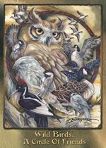 Wild Birds... - Magnet