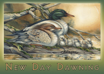 A New Day Dawning - Magnet