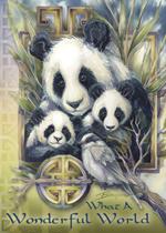 Pandas/ What A Wonderful World - Magnet
