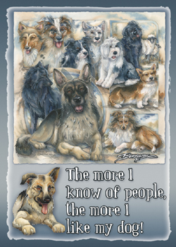 Dogs / The Good Shepherd - Magnet