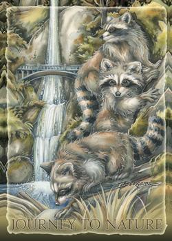 Racoons / Mischievous Adventure - Magnet