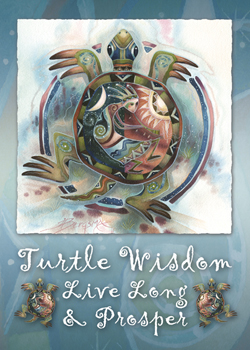 Turtle Wisdom - Magnet