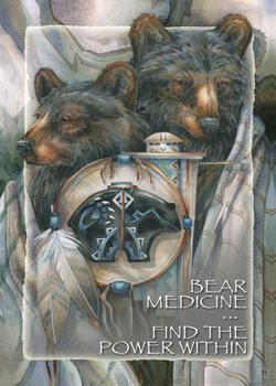 Bear Medicine - Magnet