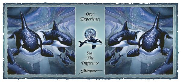 Orca Experience - Mug